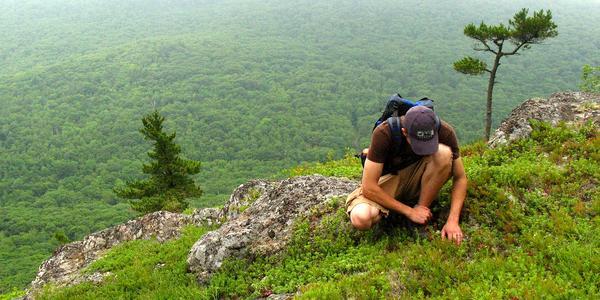Kešer v horách