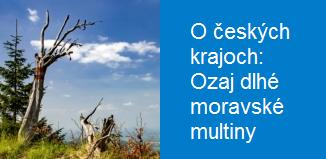 1711-05 O Ceskych Krajoch