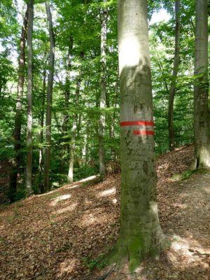 Vyznačenie hranice chráneného územia