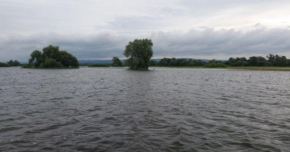Rozvodnená Morava
