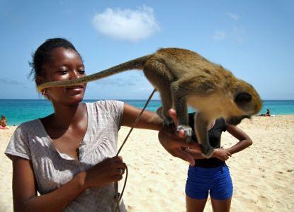 Deti na hotelovej pláži