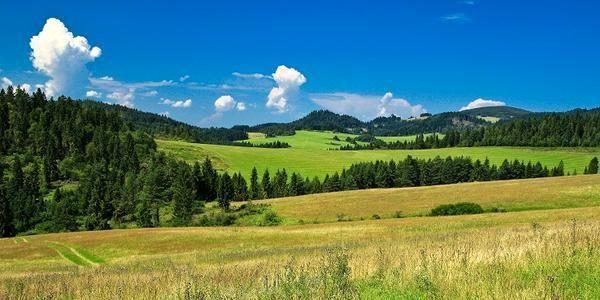 Ľubovnianska dolina