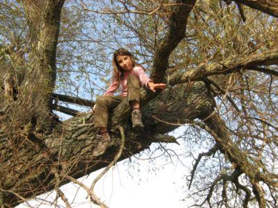 Na stromoch som vyrástla