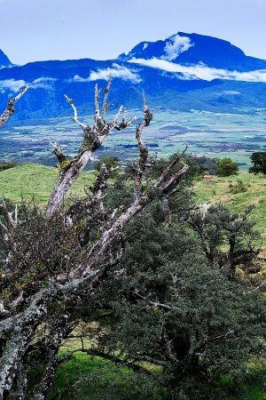 Vyhasnutá sopka Piton des Neiges, najvysšší vrch ostrova