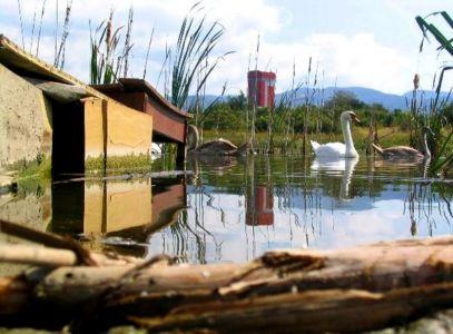 Pozostatky obce Koš