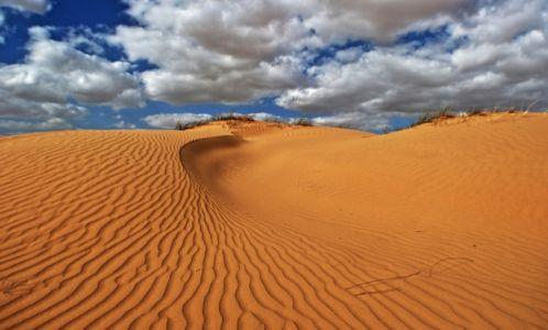 Sahara, Afrika