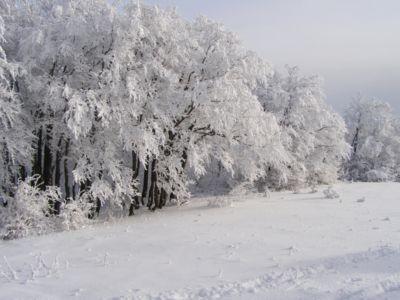 Zima na Kľaku