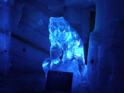 V ľadovom paláci