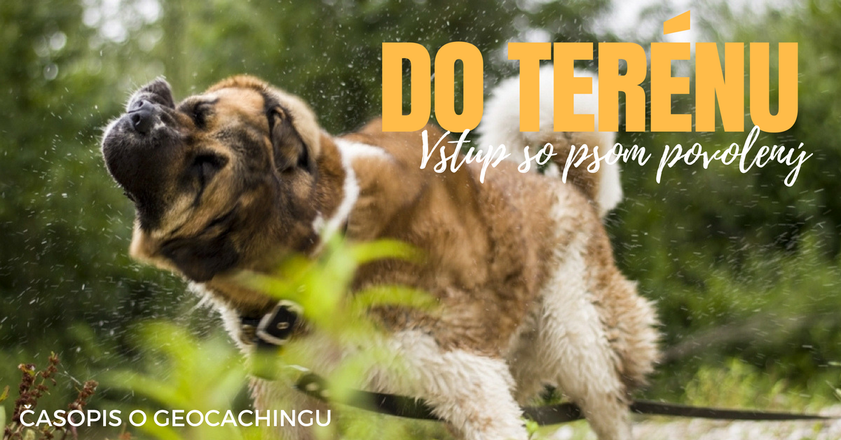 Do terénu: Vstup so psom povolený