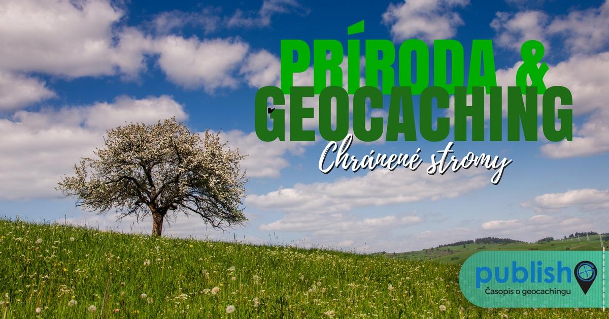 Príroda a geocaching: Chránené stromy
